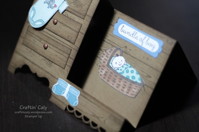 Baby Boy Step Card1