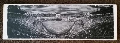 KC Royals Stadium Photo Transfer