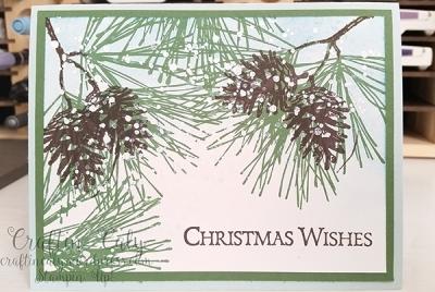 Ornamental Pine