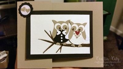 Owl Builder 1