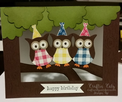 Owl Builder Window Card