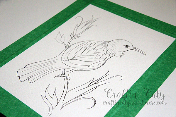 Tui Bird 3