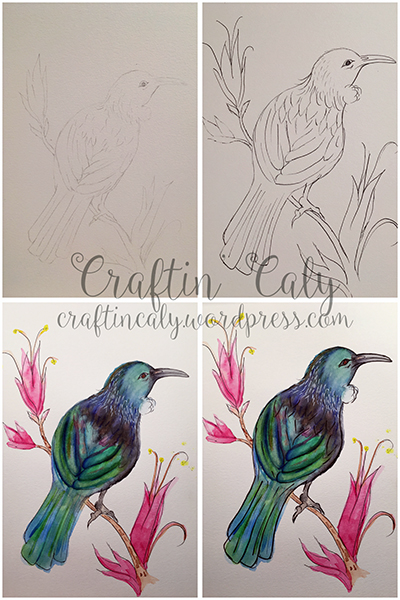 Tui Bird 4