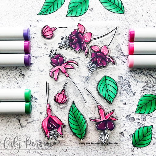 Flourising Fushcias Coloring