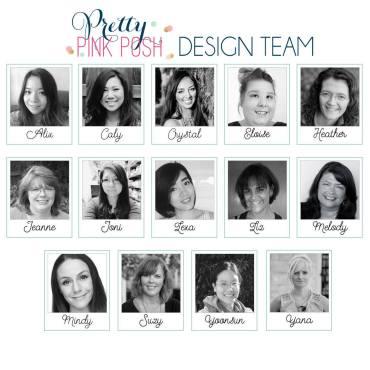 PPP Design Team