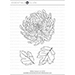 EH Mondo Chrysanthemum
