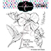 CCC BB Hibiscus Hummingbird